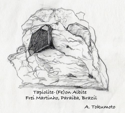 tapiolite-b.jpg